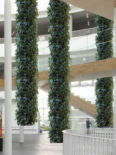 Lianensystem 'Hängende Gärten'